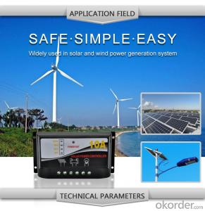 Solar LCD Controller with Best Price Hot Selling Model DM110A