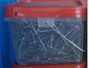 Common Nails/ Wire Nails/ Iron Nail for Industrial