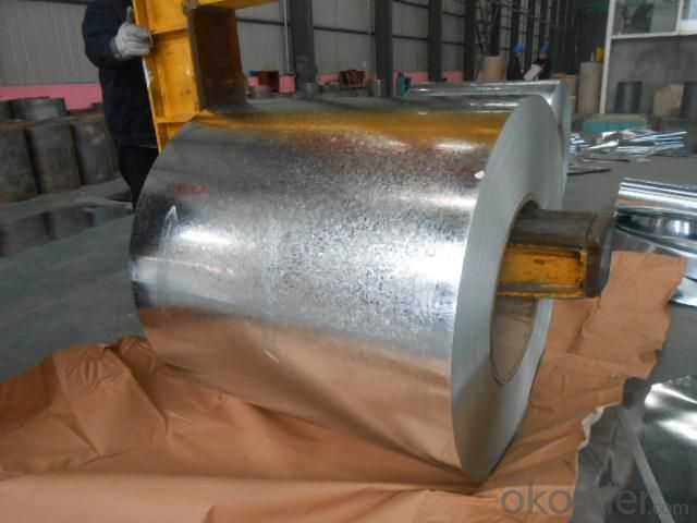 Galvanized Steel Sheet in Ciols with Prime Quality Best Selling