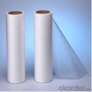 BOPP/EVA Lamination Roll Film with Best Price