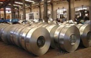 Galvanized Steel Coils/ Strips for Buildings