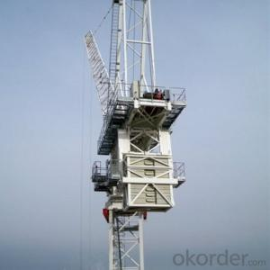 Luffing Tower Crane TCD6029 16T With Good Quality