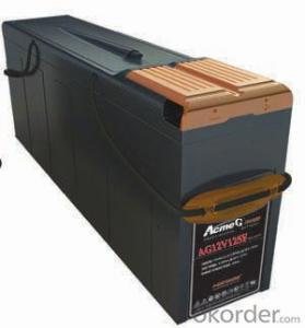 Gel Battery the AcmeG Series Battery  AG12V155F