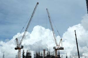 construction tower crane/Movable arm tower cranes with CE ISO certificate