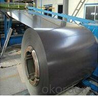 0.12mm-1.3mm Prepainted Galvanized Steel Coils