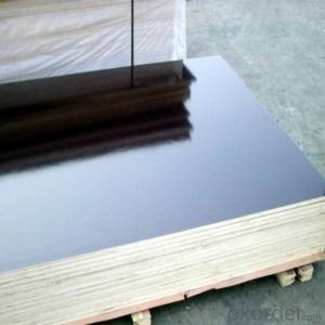 black or brown two time hot press film faced plywood
