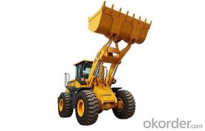 LISHIDE BRAND WHEEL LOADER CL955