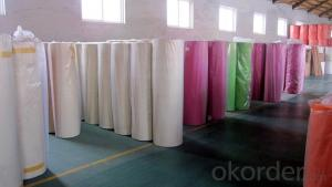 Hot Export Product PP Nonwoven Fabric spunbond non woven fabric For Agriculture