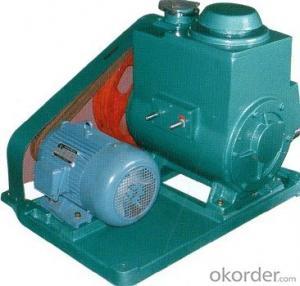 Rotary Vane Vacuum Pump 2X Bipolar Series Rotary Vane Vacuum Pump