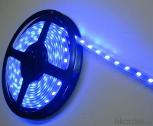 New product IP65 DC 5V 5050 RGB led 2812 rgb ribbon strip light