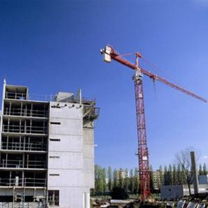 Tower Crane Chinese Qualified Manufacturer 8T