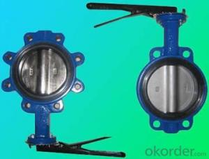 Wafer Butterfly Valve with PTFE Seat High Quality
