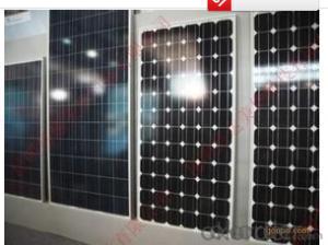 Wholesale Mono Silicon Solar Panel 85W-100W  Products