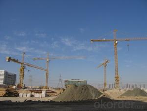 tower crane/Movable arm tower cranes with CE ISO certificate