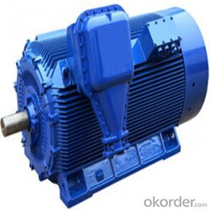 YVF Series Inverter Duty Motors In the China