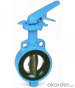 Butterfly Valve DN300 BS5163 with Hand Wheel Ductile Iron