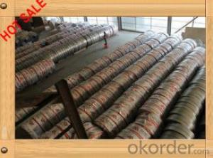 Cold Rolled Galvanized Steel Coil/Plate