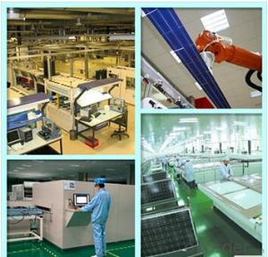 Monocrystalline Silicon Solar Modules 40Watt