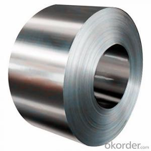 Stainless Steel Coil 304/316 Hot / Cold Rolled  Grade NO.1