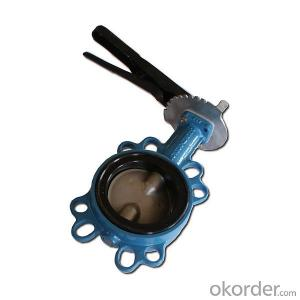 Butterfly Valve with Plastic Handle Made in China on Hot Sale