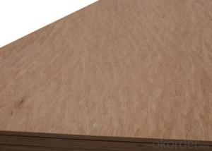 Film Faced Plywood/Waterproof Plywood/Phenolic Plywood with poplar and hardwood core