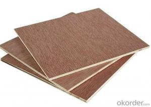 Film Faced Plywood/Waterproof Plywood/Phenolic Plywood with Poplar