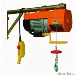 Electric Hoist Capacity 400KGS High Quality