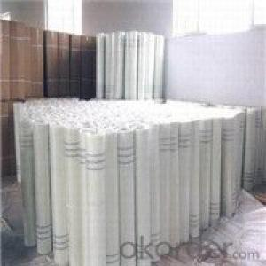 Fibreglass Mesh for Building Decoration