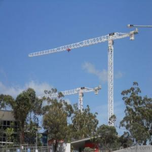 Tower Cranes TC5610 Construction Equipment Building Machinery Accessary