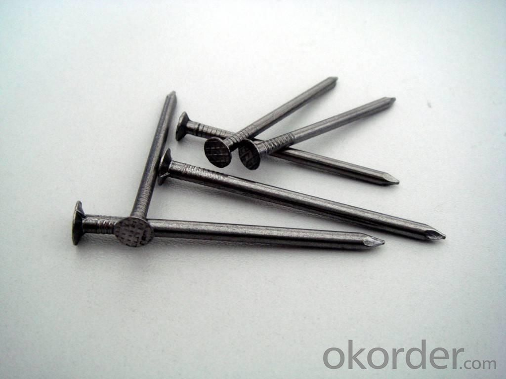 Common Iron Nail for Building Materials with High Quality and Nice Price