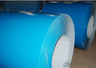Desinged Prepainted Galvanized Steel Coil (PPGI/PPGL)