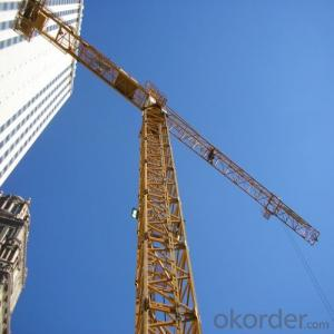 Tower Crane TC6016 Construction Equipment Part Wholesaler Sales