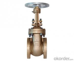 Valve with Competitive Price from 60year Old Valve Manufacturer