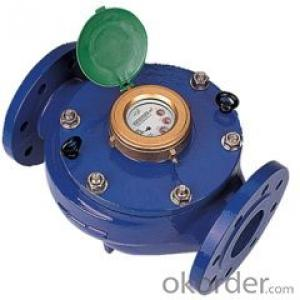 Water Meter IP68 Dry Dial RF Card Prepaid on Sale Made in China