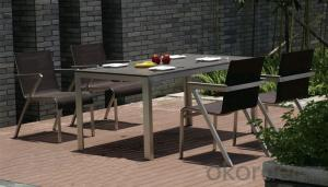 Funiture Outdoor Dining Sets with PVC PP Wood+Texitilene Material