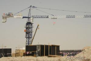 Tower Crane TC5516 Construction Equipment Building Machinery