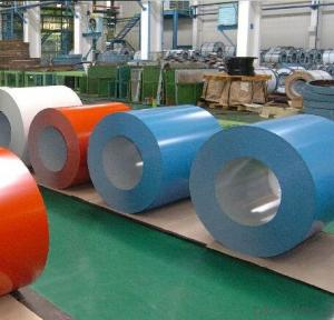 Pre-painted Galvanized Steel Coil/Color Coated Steel Coils
