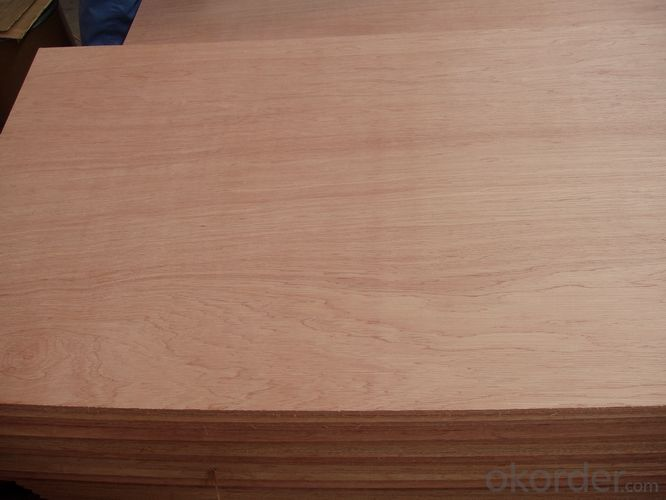 Door Skin Full Poplar Core Small Size Plywood 3'x7' 3'x6' or Other Small Size Available