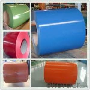 Prepainted Steel Coil/Prepainted Cold Rolled Galvanized Steel Sheet Coil