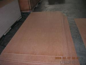 Bintangor Face and Back Plywood Poplar Core BBCC Grade