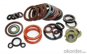 Various Size VITON SLILOCN Oil Seal for Machine