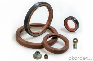 Various Size VITON/HBR/SLILOCN tcm oil seal for machine