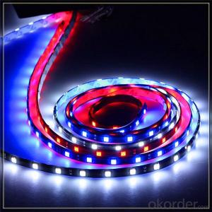 led strip light waterproof 4mm led light strip