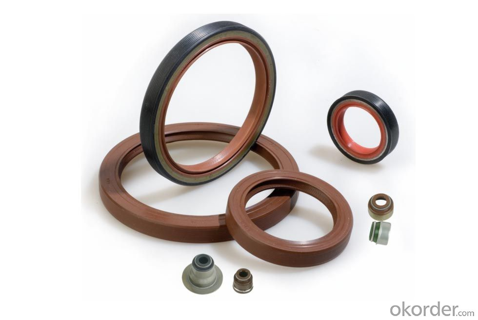 Oil Seal NBR EPDM Various Size VITON/SLILOCN Oil Seal For Machine