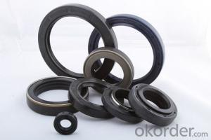 Rubber Covered O.D NBR TC Dual Lip Dustproof Mechanical Oil Seal