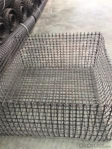 High Tensile Geogrid Plastic Geogrid with the best price