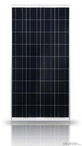 Factory Directly Sale Poly solar Panel with 25 Years Warranty CNBM