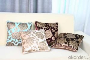 Luxury Square Pillow Cushion Cover with Velvet from Manufacturer