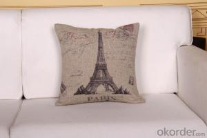 Square Pillow Cushion be Made of 100% Polyester Digital Printing