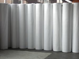 Nonwoven Fabric for Shoe and Packing Material